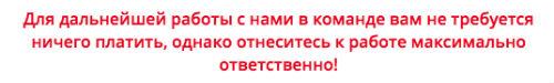 ЛОХОТРОН Finance Work Group Работа на дому 2017