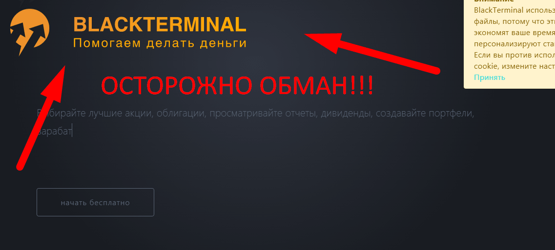 Black terminal отзывы